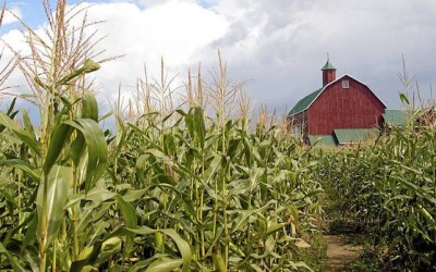 The Globe and Mail – Farmland funds grow in more ways than one